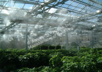 Greenhouse dark spaces fogging